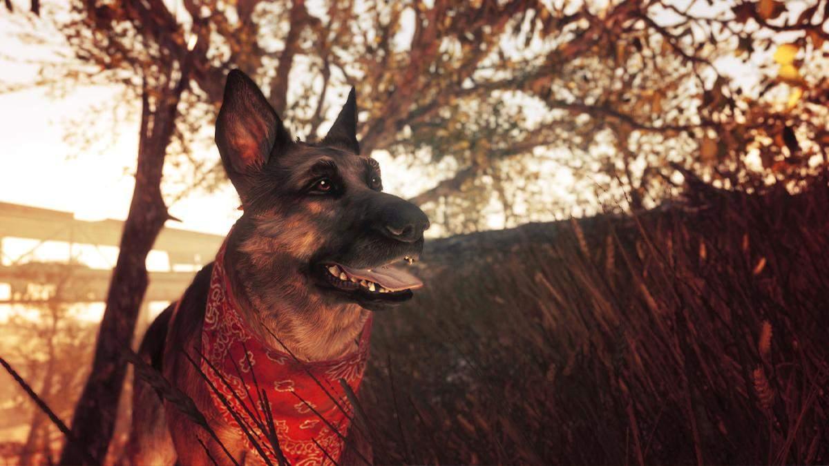 Не стало собаки, яка послужила прототипом Собацюри з Fallout 4