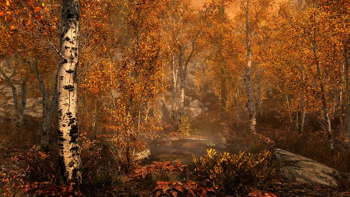 Розробник підтвердив: лисиці зі Skyrim дійсно можуть приводити гравців до скарбів - Ігри - games